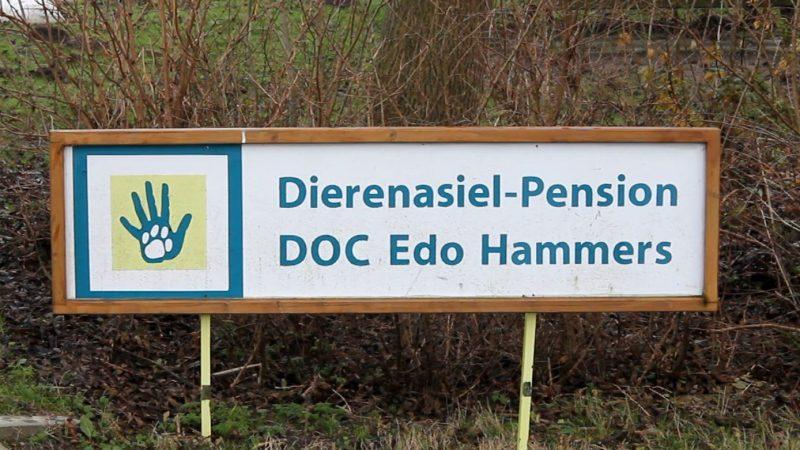 Doorstart voor dierenasiel in Kampen?