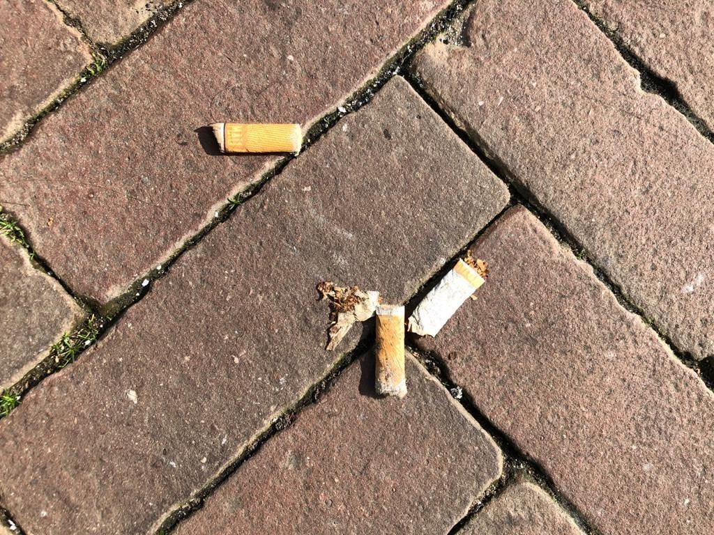 Scholen in Kampen goed op weg naar een rookvrije generatie