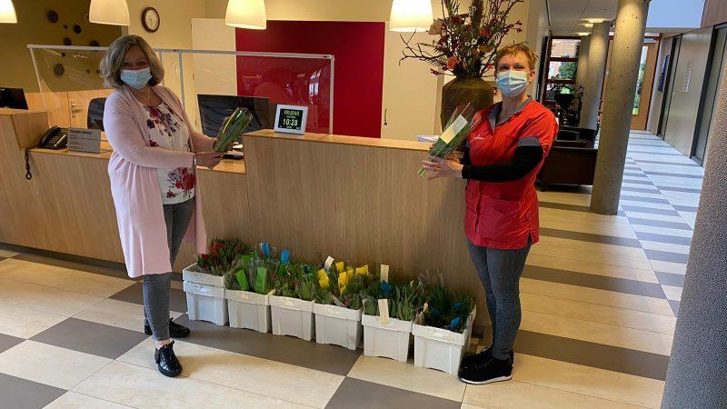 Tulpen voor Kamper Verzorgingshuizen