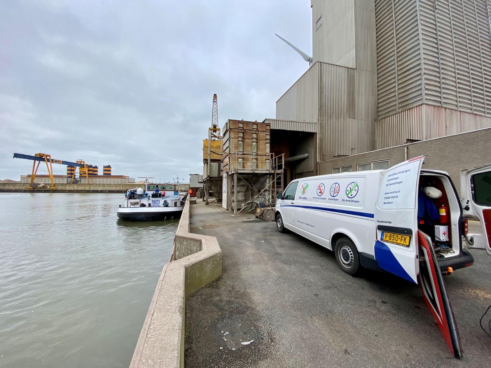 Binnenvaartschepen met tarwe veilig gelost in Haatlandhaven
