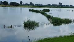 Hoog water IJssel Wilsum foto A. Bergstra (4)